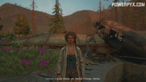 Far Cry New Dawn Deep Dive 1