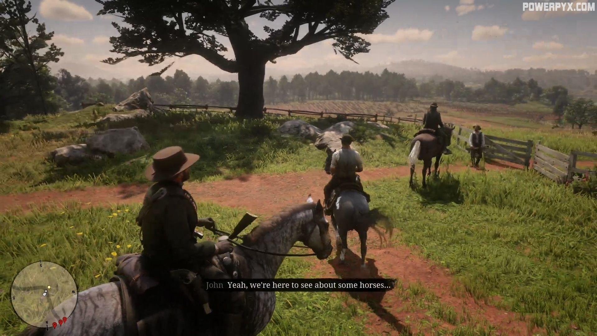 Red Dead Redemption 2 Horse Flesh For Dinner Walkthrough
