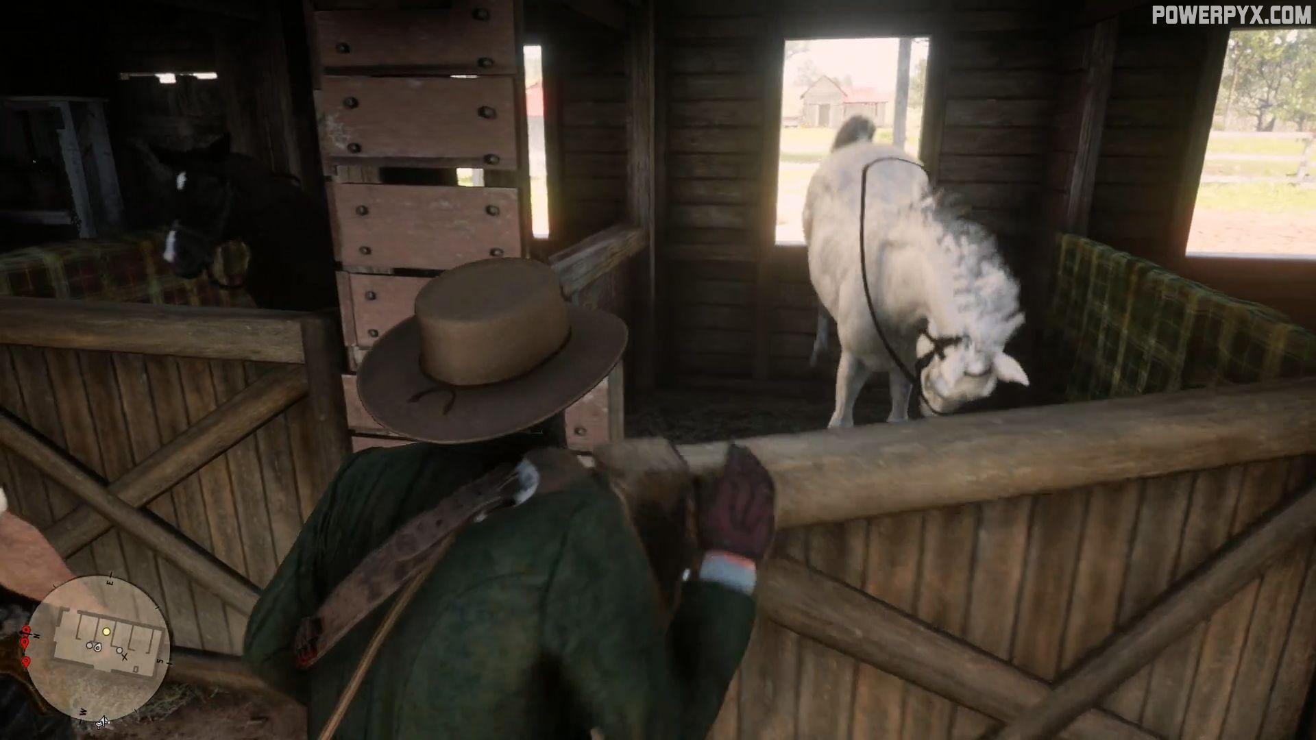 Picture of: Red Dead Redemption 2 Horse Flesh For Dinner Walkthrough