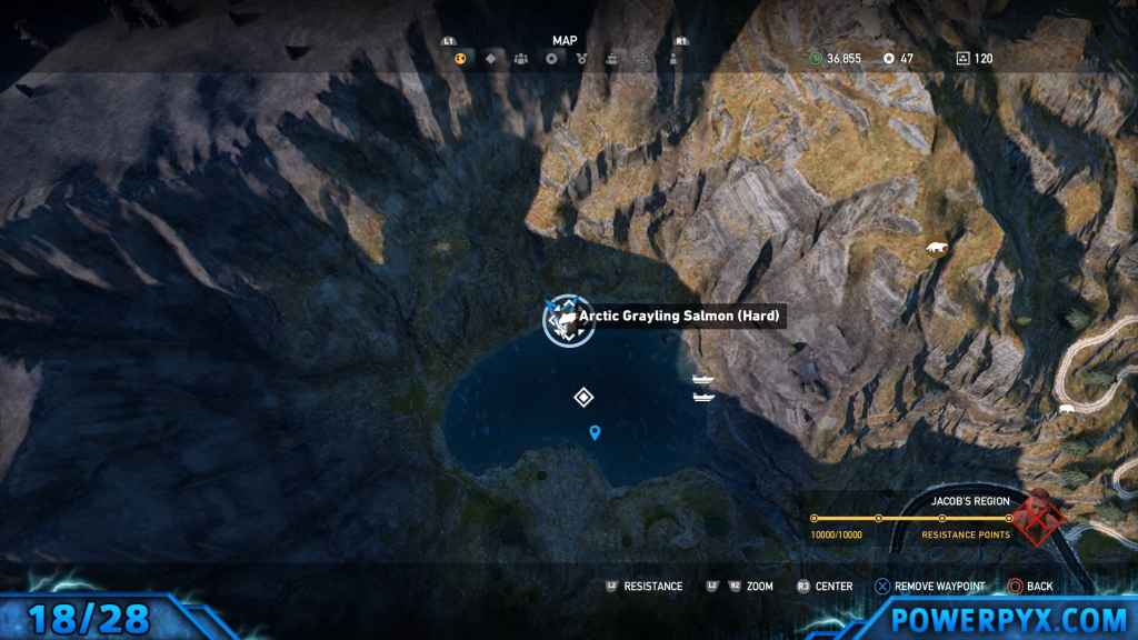 Far Cry 5 All Animals Amp Fish Locations Hunting Spots