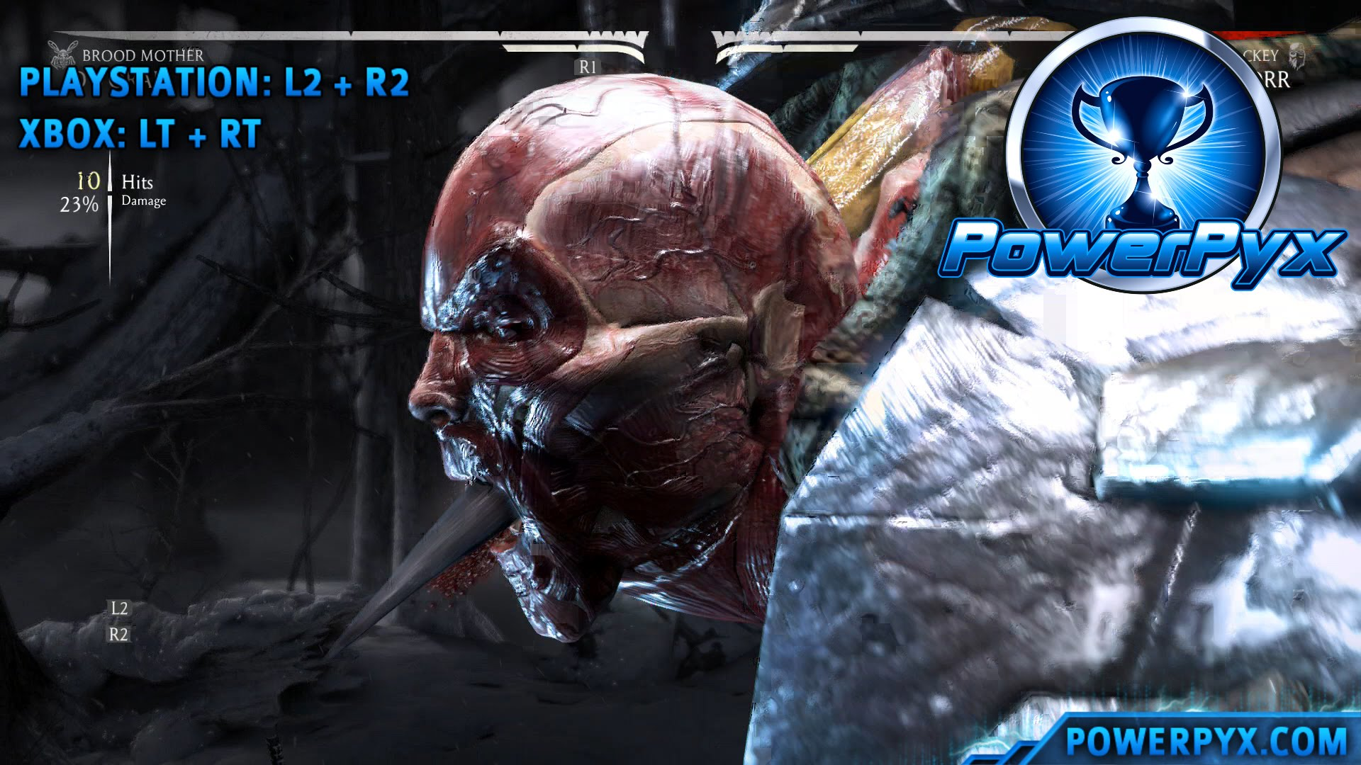 Mortal Kombat X - Performing 10 Hit Combos with All