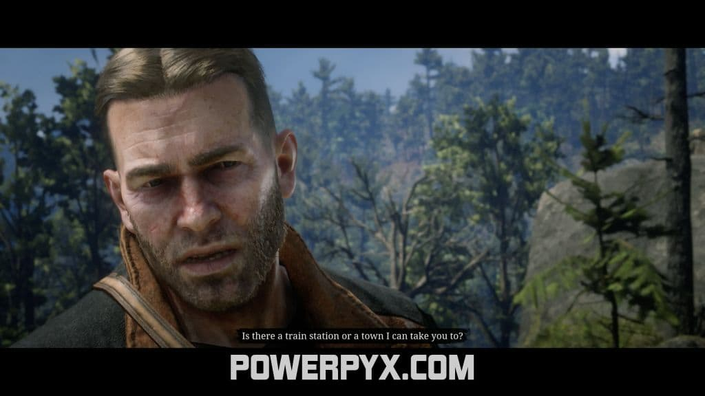 Red Dead Redemption 2 The Widow Of Willard S Rest Stranger Encounter