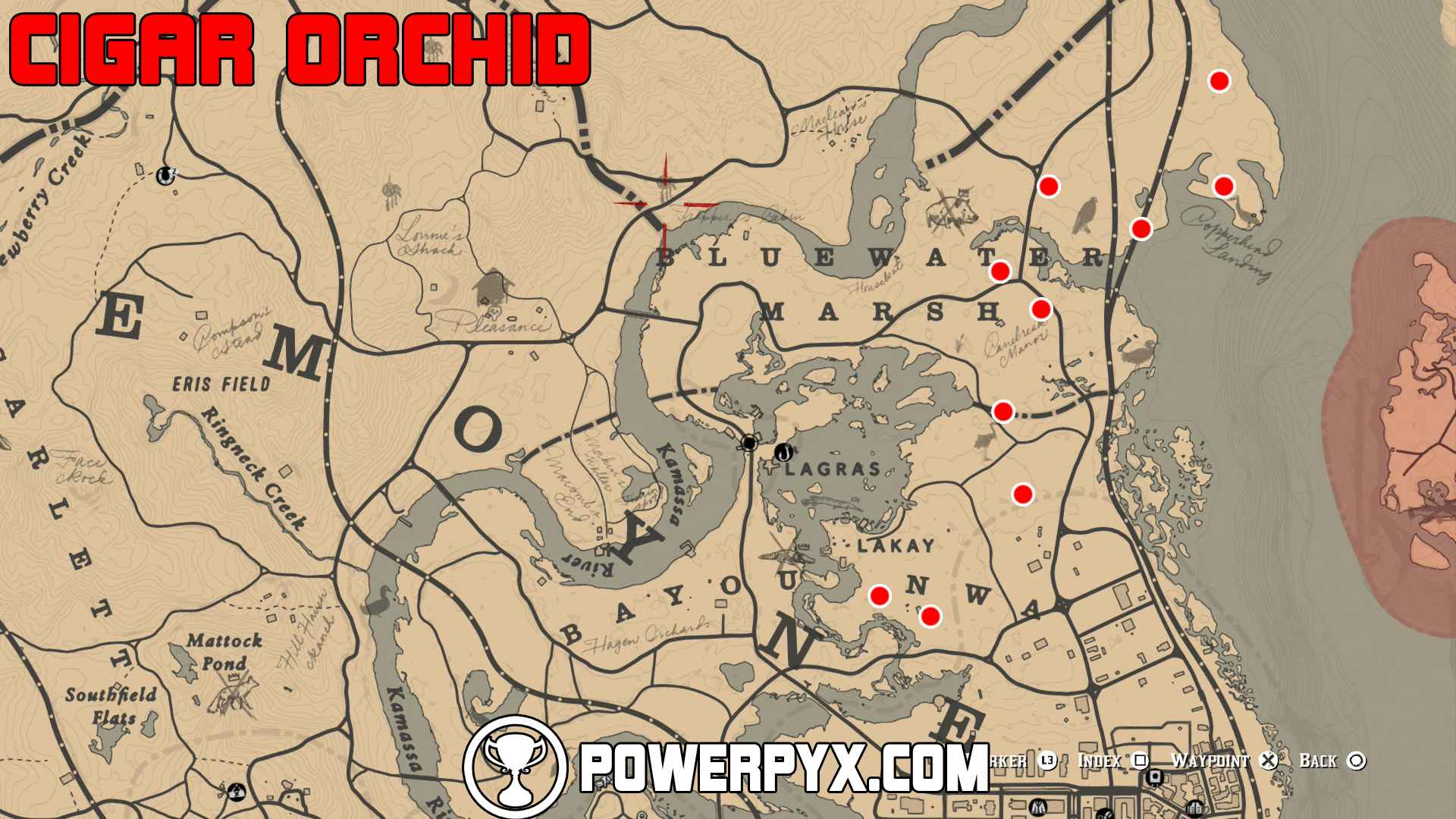 Red Dead Redemption 2 All Exotics Locations