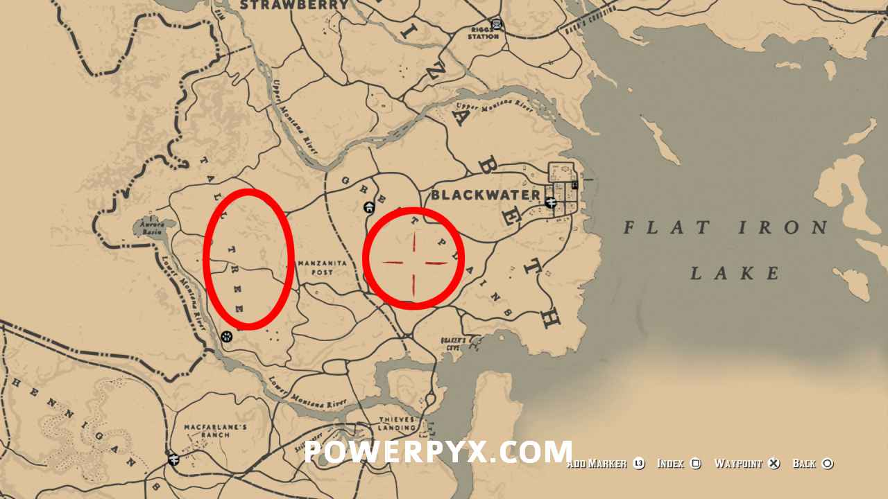 Red Dead Redemption 2 Wild Horse Breed Locations